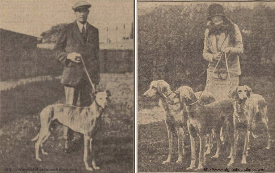 http://www.afghanhoundtimes.com PHOTO Mr, Mrs  T S Couer (Garryhmoe) 1929