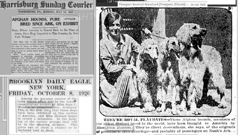 http://www.afghanhoundtimes.com Jean Manson(*Cove) USA visit 1926
