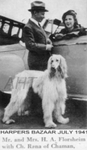 http://www.afghanhoundtimes.comAm Ch Rana Of Chaman of Royal Irish With his 2nd US Owners 1941 Mr Mrs H A Florsheim