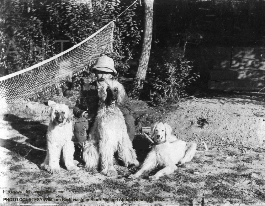 http://www.afghanhoundtimes.com Photo Capt Barff with Zardin and two hounds, Cownpor, India